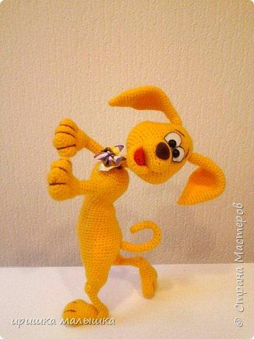 Собака танцевака. фото 2