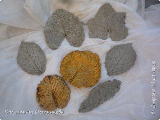 Здравствуйте , дорогие  мастера  и  мастерицы !   Ранней  осенью  сделала  ещё  несколько  малых и  средних  листьев  из  цементной  массы . Затем  покрасила  их  краской  из  баллончиков .  Предлагаю  посмотреть  на  них   в  процессе  работы  и   затем  в  саду . фото 2