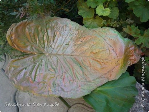 Здравствуйте , дорогие  мастера  и  мастерицы !   Ранней  осенью  сделала  ещё  несколько  малых и  средних  листьев  из  цементной  массы . Затем  покрасила  их  краской  из  баллончиков .  Предлагаю  посмотреть  на  них   в  процессе  работы  и   затем  в  саду . фото 13