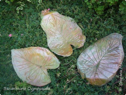 Здравствуйте , дорогие  мастера  и  мастерицы !   Ранней  осенью  сделала  ещё  несколько  малых и  средних  листьев  из  цементной  массы . Затем  покрасила  их  краской  из  баллончиков .  Предлагаю  посмотреть  на  них   в  процессе  работы  и   затем  в  саду . фото 5