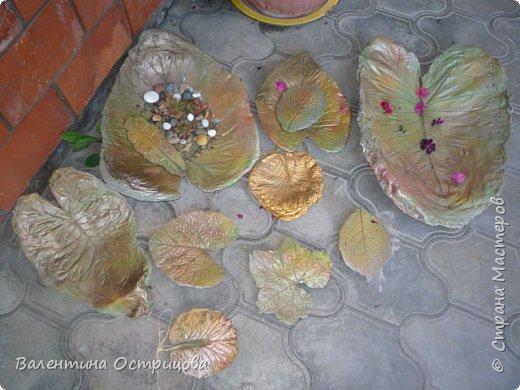 Здравствуйте , дорогие  мастера  и  мастерицы !   Ранней  осенью  сделала  ещё  несколько  малых и  средних  листьев  из  цементной  массы . Затем  покрасила  их  краской  из  баллончиков .  Предлагаю  посмотреть  на  них   в  процессе  работы  и   затем  в  саду . фото 3