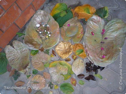 Здравствуйте , дорогие  мастера  и  мастерицы !   Ранней  осенью  сделала  ещё  несколько  малых и  средних  листьев  из  цементной  массы . Затем  покрасила  их  краской  из  баллончиков .  Предлагаю  посмотреть  на  них   в  процессе  работы  и   затем  в  саду . фото 1