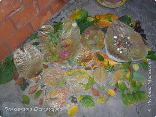 Здравствуйте , дорогие  мастера  и  мастерицы !   Ранней  осенью  сделала  ещё  несколько  малых и  средних  листьев  из  цементной  массы . Затем  покрасила  их  краской  из  баллончиков .  Предлагаю  посмотреть  на  них   в  процессе  работы  и   затем  в  саду . фото 4