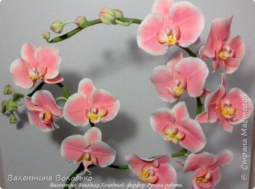 Добрый день мастера и мастерицы!!!!У меня новый заказ на розовую орхидею. фото 1