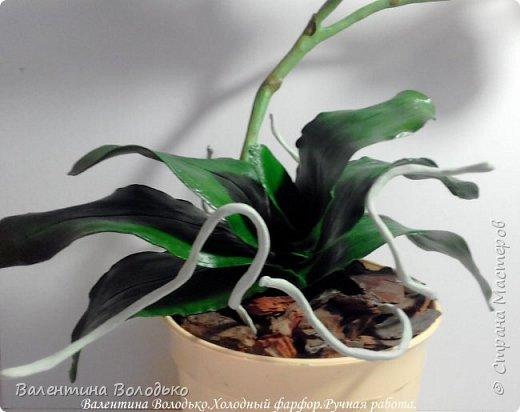 Добрый день мастера и мастерицы!!!!У меня новый заказ на розовую орхидею. фото 3