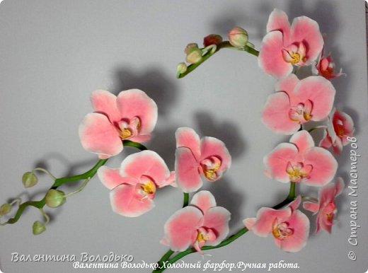 Добрый день мастера и мастерицы!!!!У меня новый заказ на розовую орхидею. фото 4