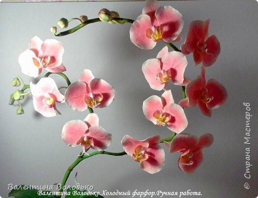 Добрый день мастера и мастерицы!!!!У меня новый заказ на розовую орхидею. фото 5