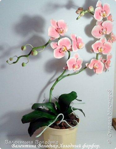 Добрый день мастера и мастерицы!!!!У меня новый заказ на розовую орхидею. фото 2