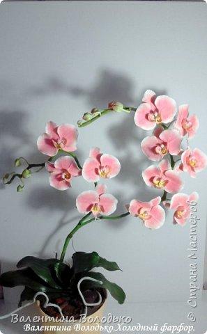 Добрый день мастера и мастерицы!!!!У меня новый заказ на розовую орхидею. фото 6
