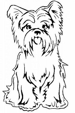 """Несколько лет ждала эта очаровательная собачка своей очереди,  обитая в моих """"картиночных"""" запасах...  Нарисовала шаблончик. И вот она - моя симпатяга - такая получилась. фото 31"""