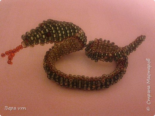 Скорпион. фото 3