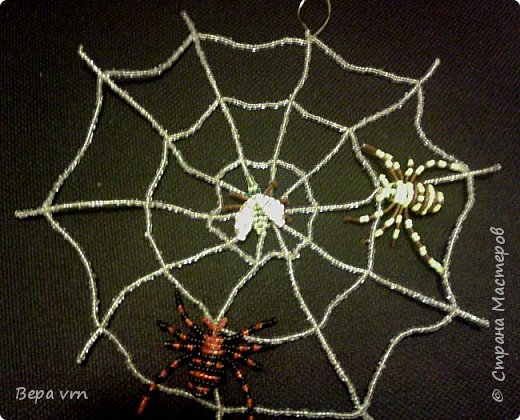 Скорпион. фото 8