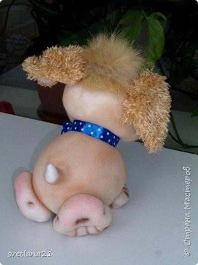 Вот и приближается Новый год, готовим подарки и главным будет символ наступающего года собака, у меня вот такие щенки. фото 3