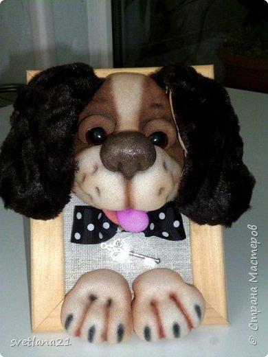 Вот и приближается Новый год, готовим подарки и главным будет символ наступающего года собака, у меня вот такие щенки. фото 8