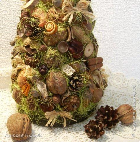 Елочка из природных материалов - несколько видов шишек, желуди, орехи, срезы дерева, корица, косточки, сизаль, рафия. Высота 35 см. Закреплена на срезе дерева. фото 2