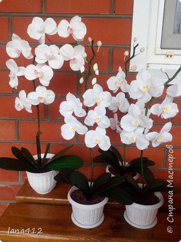 очень захотелось сделать орхидеи! фото 21