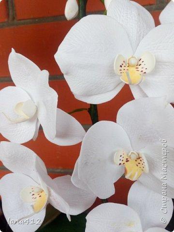 очень захотелось сделать орхидеи! фото 23
