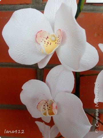 очень захотелось сделать орхидеи! фото 24