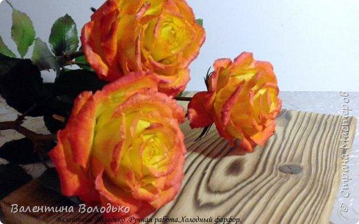 Добрый день мастера и мастерицы.Заказали мне оранжевые розы,ну а я слепила желто-оранжевые.Не нравятся мне однотонные розы.Правда реакции заказчицы еще не знаю.Как обычно с вами первыми делюсь. фото 6