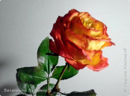 Добрый день мастера и мастерицы.Заказали мне оранжевые розы,ну а я слепила желто-оранжевые.Не нравятся мне однотонные розы.Правда реакции заказчицы еще не знаю.Как обычно с вами первыми делюсь. фото 3