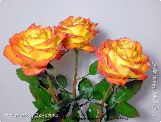 Добрый день мастера и мастерицы.Заказали мне оранжевые розы,ну а я слепила желто-оранжевые.Не нравятся мне однотонные розы.Правда реакции заказчицы еще не знаю.Как обычно с вами первыми делюсь. фото 4