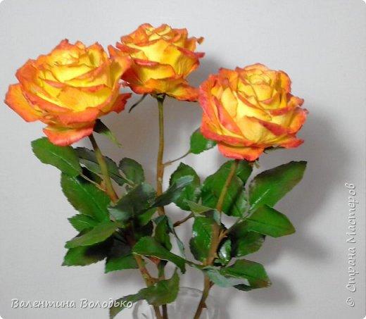 Добрый день мастера и мастерицы.Заказали мне оранжевые розы,ну а я слепила желто-оранжевые.Не нравятся мне однотонные розы.Правда реакции заказчицы еще не знаю.Как обычно с вами первыми делюсь. фото 5