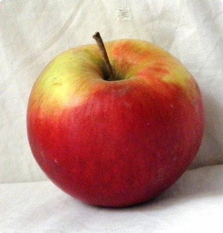 """Оказывается, что этот мастер-класс у меня юбилейный-50!  Кто ещё тут не выращивал яблок? Именно для вас я и сделала этот мастер-класс))). Каких только яблок ни делали мастерицы в нашей Стране Мастеров: и лепные, и кружевные и в пейп-арте...и у каждой есть свои секретики и по форме , и по оформлению этого прекрасного фрукта. Этот фрукт - универсальный подарок на любой праздник...сделал на нём сердечко - будет на день рождения или День Любви...сделал дерево - вообще для всех! И как символ богатства и плодовитости, и как достатка в доме...  Для МАСТЕРОВ я вряд ли расскажу что-то новое, но новичкам , надеюсь, мой МК будет полезен. Тем более, что мне снова заказали """"жалезные"""" яблоки на подарки мужчинам, им почему-то нравится этот фрукт.))) фото 2"""