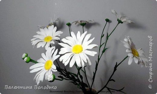 Добрый день мастера и мастерицы!!!За окно зима ,а у меня расцвели ромашки!!! фото 2