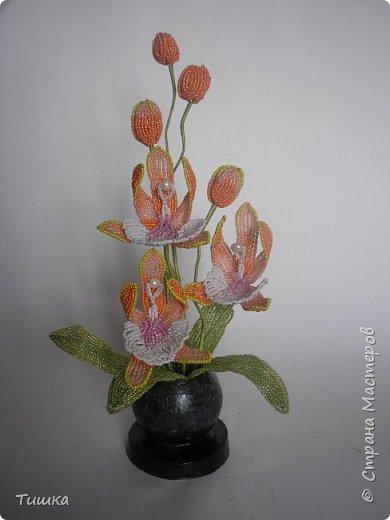Эту орхидею делала по фото, найденному в интернете.