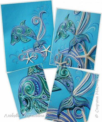 Дельфин фото 3