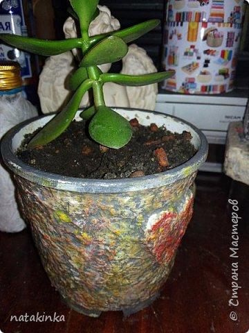 декор цветочных горшков фото 3