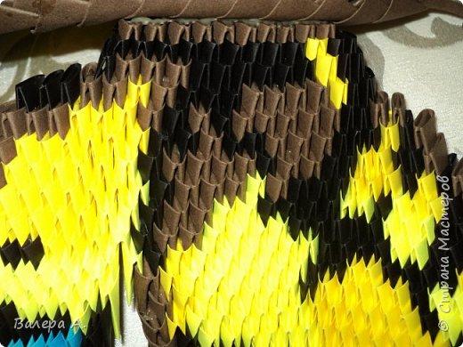 Бабочка махаон. фото 7