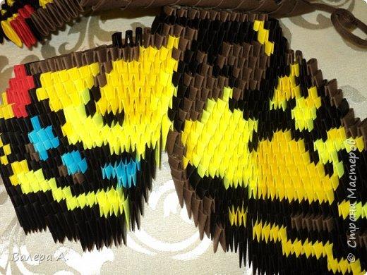 Бабочка махаон. фото 8