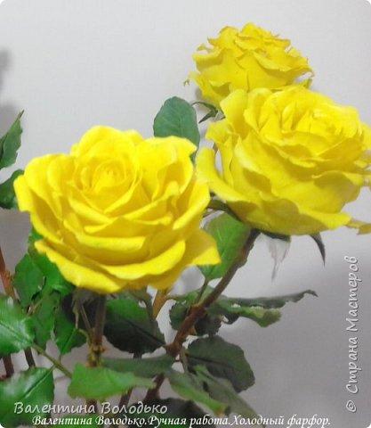 Добрый день мастера и мастерицы!!!!Сегодня у меня яркие желтые розы,лучшее средство для понятие настроения промозглым зимним днем!!! фото 5