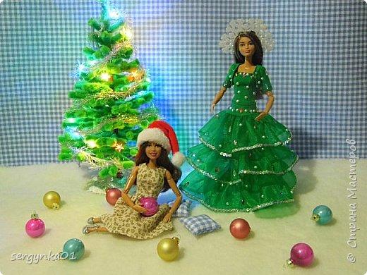 """Конкурсная фотография для группы ВК. Для конкурса был изготовлен наряд """"Елочка"""" для куклы Барби, рождественский колпак, а также для интерьера подушечки. Украшение на голове куклы сделано из пластиковой снежинки. Цветочное платье и елочка были изготовлены задолго до конкурса. Елочка изготовлена из синельных палочек и деревянных шпажек.  фото 1"""