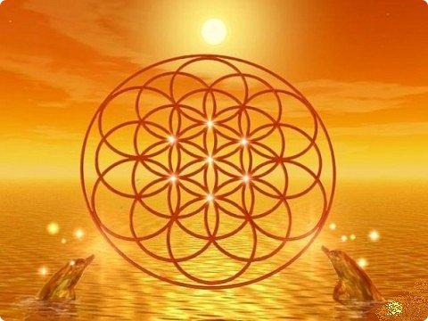"""Сегодня я """"посадила"""" свой «Цветок жизни». Пусть цветет и вносит гармонию в жизнь! Эту мандалу я сплела еще весной https://stranamasterov.ru/node/1097178 , а сейчас захотелось оформить.  «Цветок Жизни» — древнейший и наиболее важный из всех символов Сакральной Геометрии. Очень мне нравится этот символ.Семь цветков объединены в один. Семь - одно из самых удивительных чисел.  Достаточно сложная геометрически конструкция для плетения, пересечение семи шестилучевых мандал, пожалуй самая сложная мандала которую я плела. Чтобы удержать симметрию надо постараться. фото 3"""