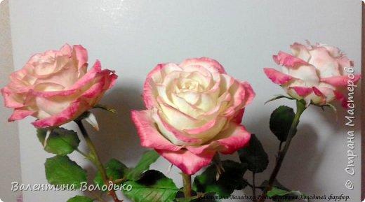 Добрый день мастера и мастерицы!!!!Очередные розы представляю вашему вниманию!!! фото 1