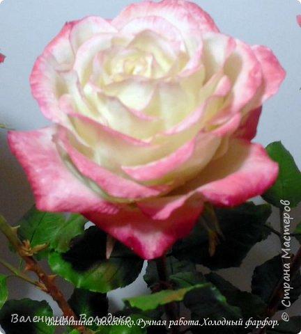 Добрый день мастера и мастерицы!!!!Очередные розы представляю вашему вниманию!!! фото 4