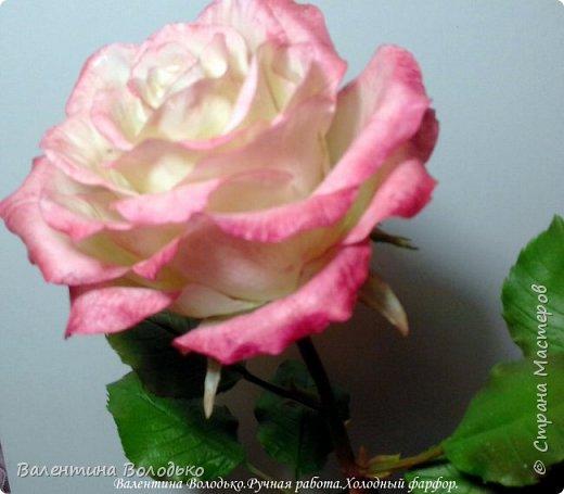 Добрый день мастера и мастерицы!!!!Очередные розы представляю вашему вниманию!!! фото 5