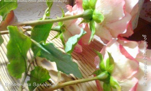 Добрый день мастера и мастерицы!!!!Очередные розы представляю вашему вниманию!!! фото 7