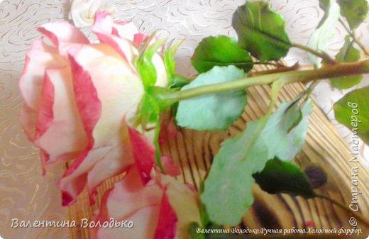 Добрый день мастера и мастерицы!!!!Очередные розы представляю вашему вниманию!!! фото 8