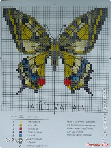 Бабочка махаон. фото 11