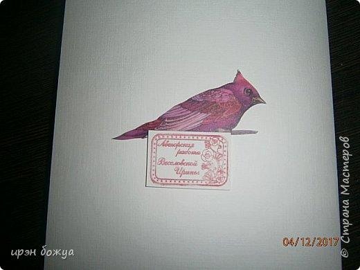 Всем привет. Сегодня у меня две разноплановые открытки. С шарами- это пришел новый ножик для машинки и такая с птичкой- бумага дюже красивая. фото 8