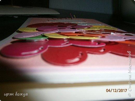 Всем привет. Сегодня у меня две разноплановые открытки. С шарами- это пришел новый ножик для машинки и такая с птичкой- бумага дюже красивая. фото 11