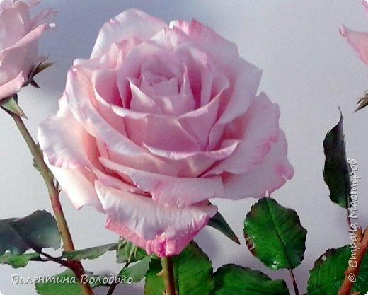 Добрый день мастера и мастерицы!!!!С первым днем весны!!!!Хоть сегодня у нас на улице пурга,весна уже наступила и пускай эти розы порадуют вас!!! фото 4