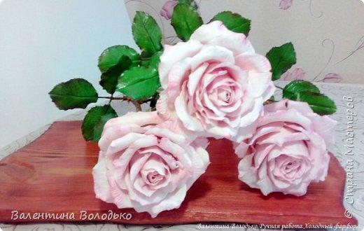 Добрый день мастера и мастерицы!!!!С первым днем весны!!!!Хоть сегодня у нас на улице пурга,весна уже наступила и пускай эти розы порадуют вас!!! фото 5