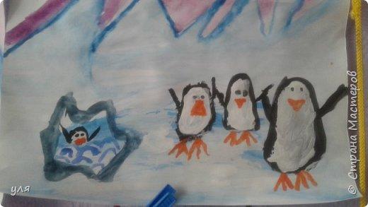 танцующие пингвины фото 2