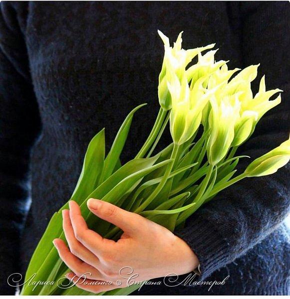 """Закончила работу над такими """"необычными"""" тюльпанами. На последнем фото - живые цветы! Это они меня вдохновили на создание этого букета. фото 10"""