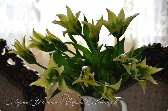 """Закончила работу над такими """"необычными"""" тюльпанами. На последнем фото - живые цветы! Это они меня вдохновили на создание этого букета. фото 3"""