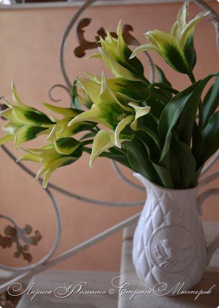 """Закончила работу над такими """"необычными"""" тюльпанами. На последнем фото - живые цветы! Это они меня вдохновили на создание этого букета. фото 5"""
